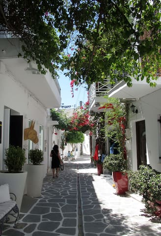 50 metres from the hotel you will find one of our favorite streets in Parikia.  Access to shops, restaurants, nightlife and transportation.  To see videos of the rooms, please try you tube hotel parko channel.