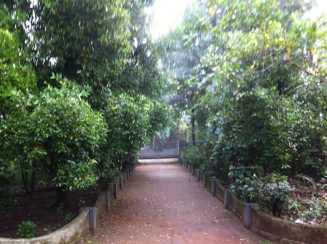 Back Packers Cochin Heritage Villa, Kadoopadam