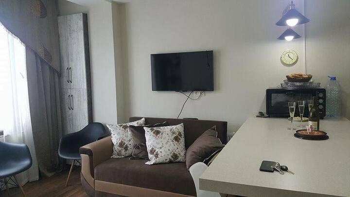 Malkhazi's apartments in Bakuriani. VILLA DELUX