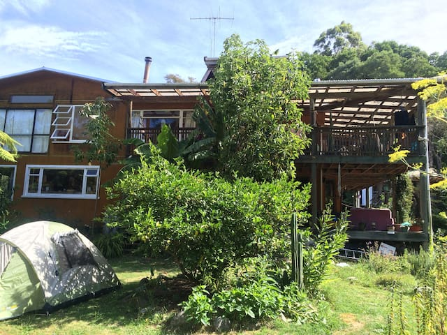 Enjoy sharing our Home close to Abel Tasman Park