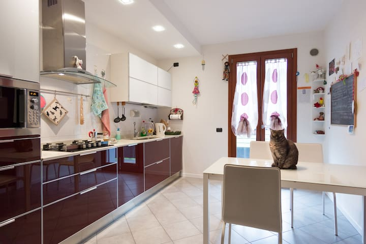 Private room & bathroom for cat lovers - Villanova di Camposampiero - Lejlighed