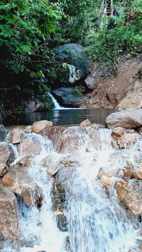 Destination wild paradise obey wild rulesmunippara