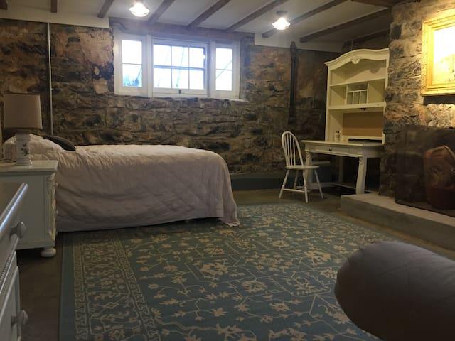 Basement bedroom with queen