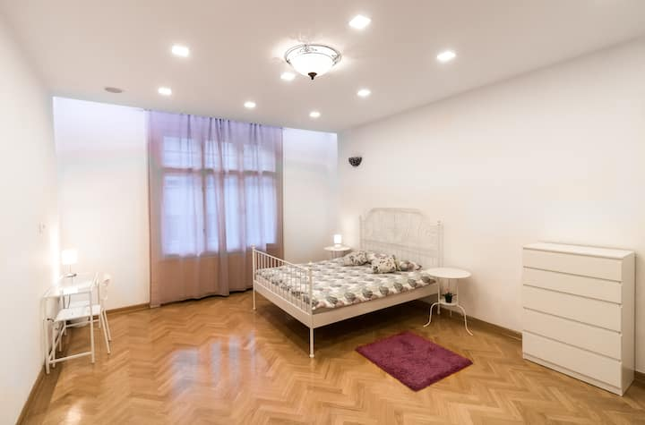 Spacious Room in Zagreb Center