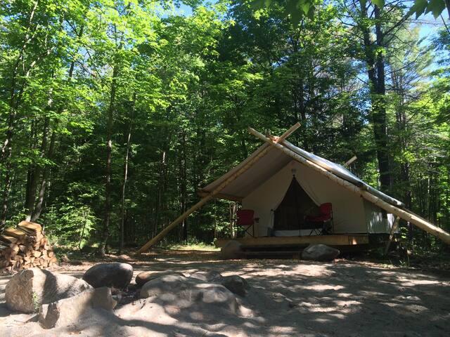 Posh Primitive Poppy Luxe Tent
