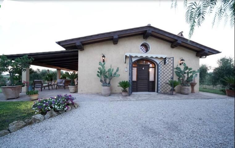 B&B Casa degli ulivi - Moraiolo