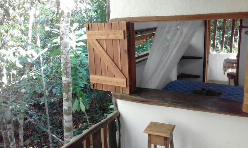Casa da Música/vivência ecológica.