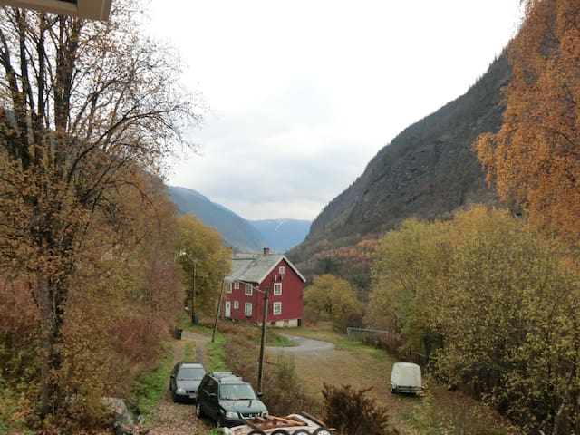 View from window in autum