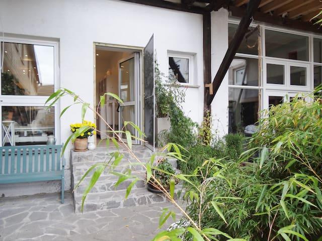 Im Scheunenatelier am Altrhein großzügig wohnen - Ginsheim-Gustavsburg - Loft