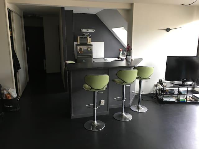 Chambre 1 en appartement duplex agréable/lumineux