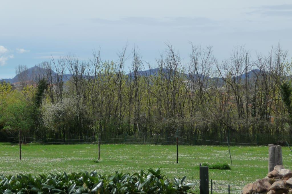 La chaîne des puys à 5km avec le puy de Dôme, Vulcania, le Pariou,...