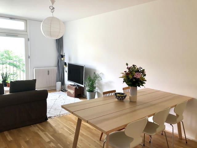 Hyggelig lejlighed på indre Nørrebro