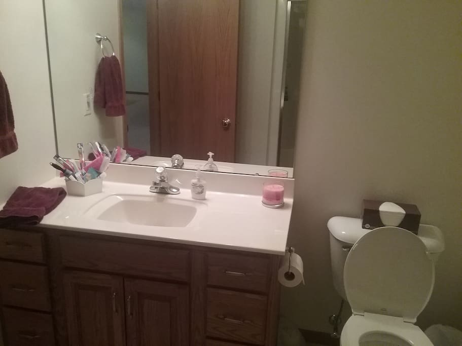 Shower and spacious vanity