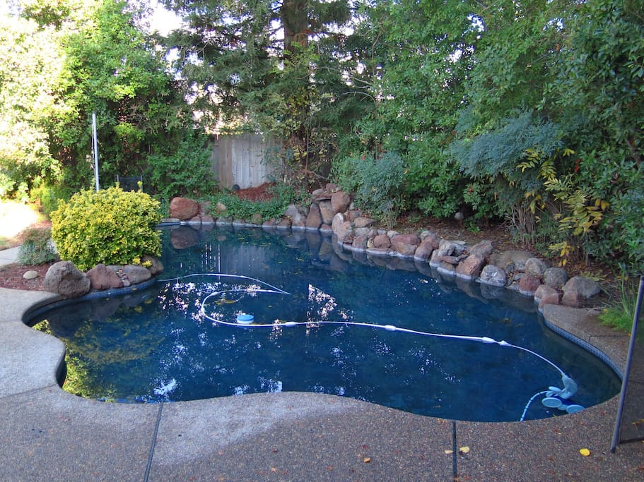 Spacious Home On Green Wing Way With Pool Houses For Rent In Rancho Cordova California