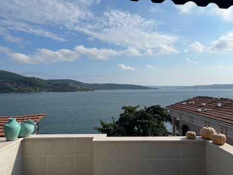Rooftop with stunning Bosphorus view