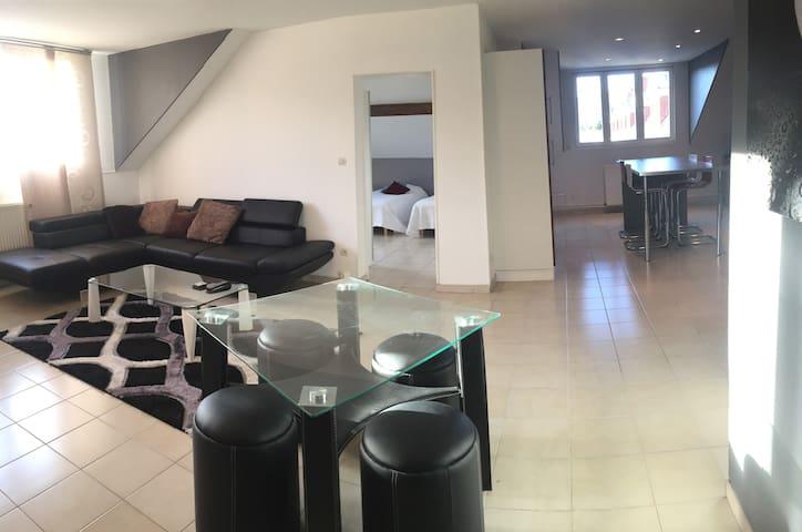 Grand appartement INES 110 m2 meublé centre ville