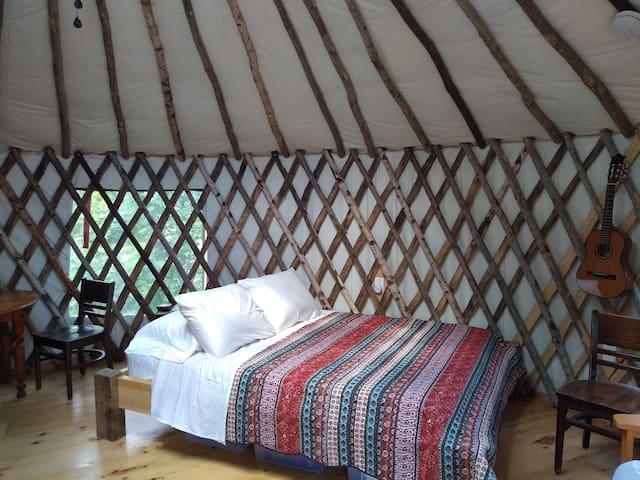 Wild Acres Yurt on 36 acres.