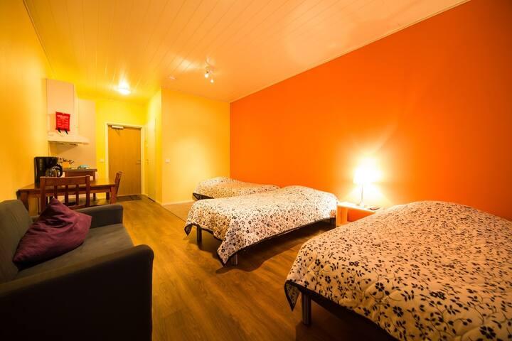 Cozy famiily apartments with sauna No.7