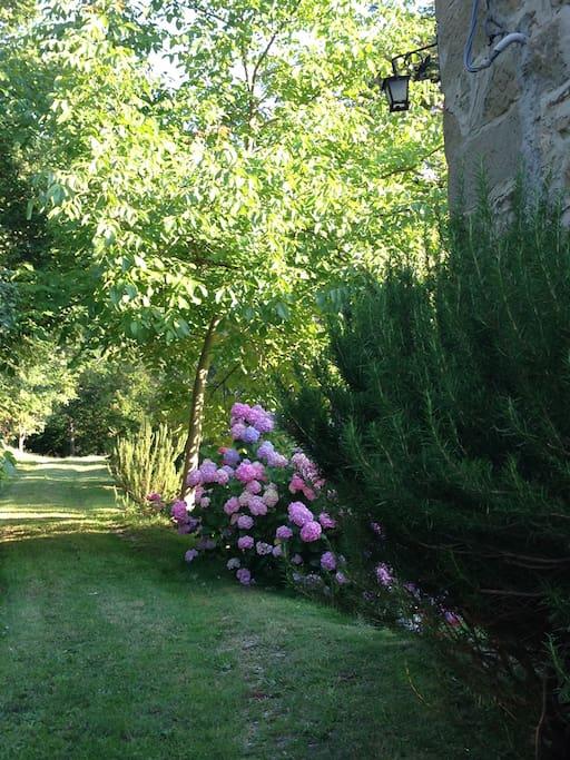 Ingresso del giardino