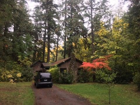 Classy Comfortable Close in Creekside Cabin