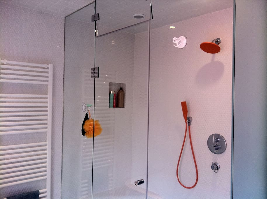 Enclosed shower with steam bath