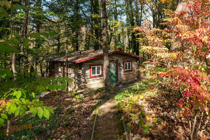 Rustic Birch Cabin in the Woods - PET FRIENDLY!