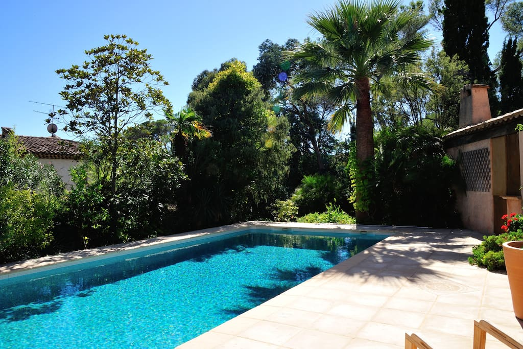 A view of the swimming pool