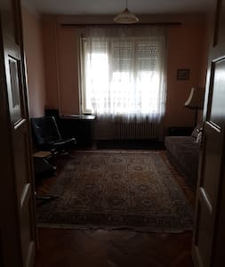 Apartment in center, 48m2, pets friendly,1st floor - 諾維薩德