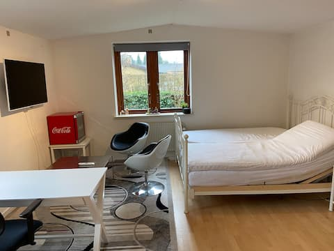 Large room with private entrance and bathroom