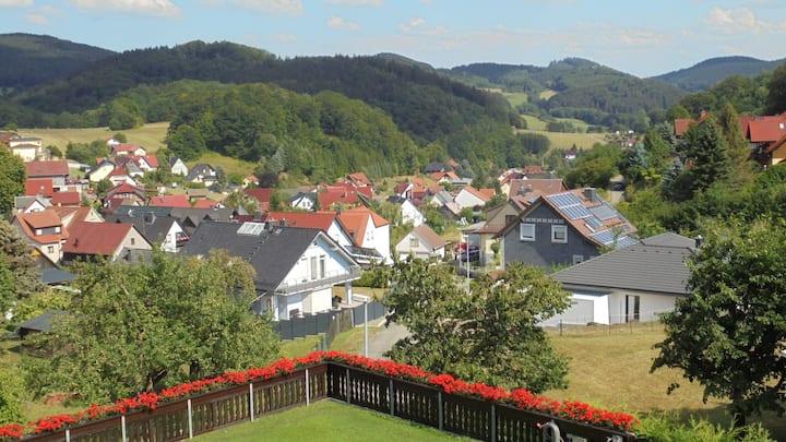 Die Heppsburg'