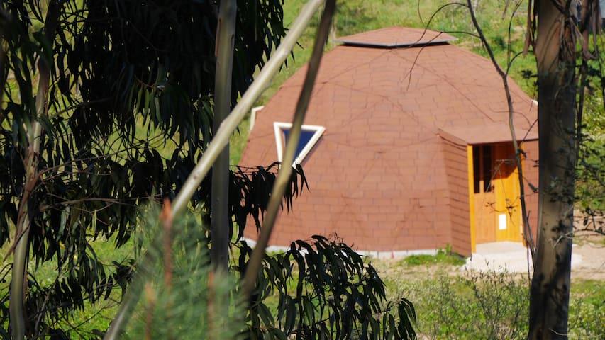 Vale das cupulas - Figueiró dos Vinhos - Overig