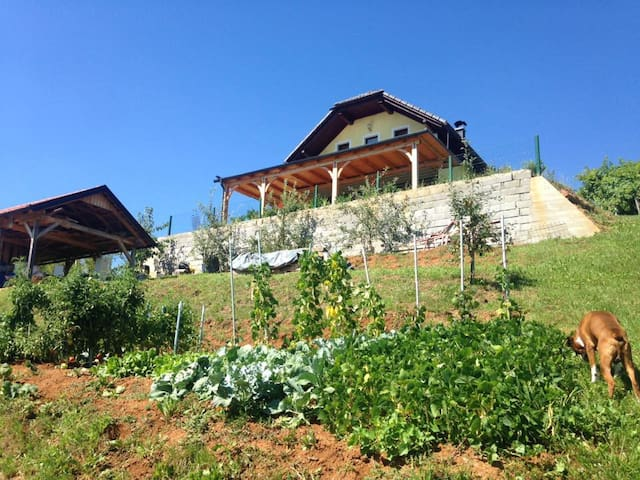 Summer house/vineyard cottage near Kolpa river - Gornja Lokvica - บ้าน