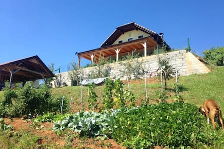 Summer house/vineyard cottage near Kolpa river - Gornja Lokvica