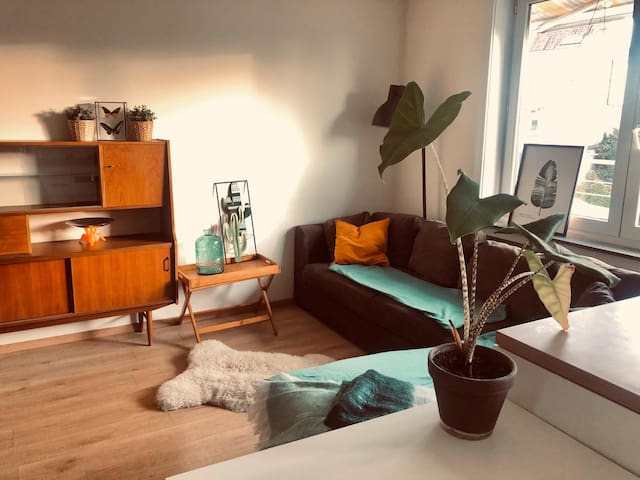 Cosy apartment near by Brussels, renovated