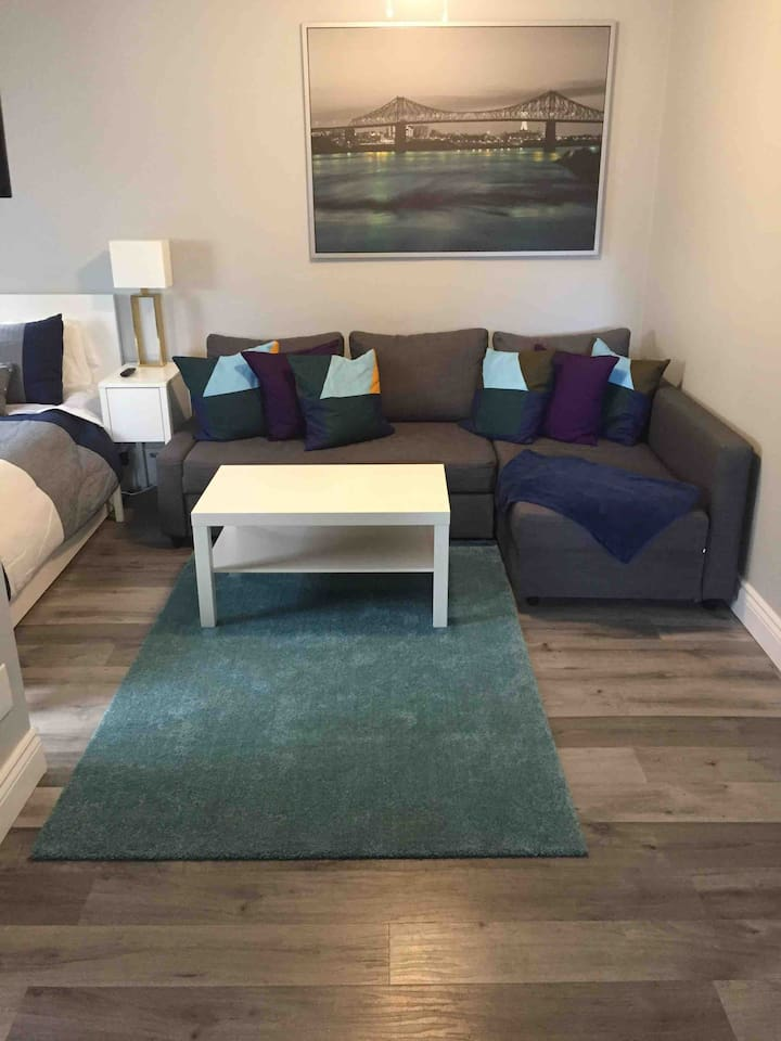 """Living room with comfy couch and 43"""" tv with Netflix connected."""