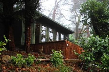 Spacious, bright cabin with sun deck. Great view. - Hindhead