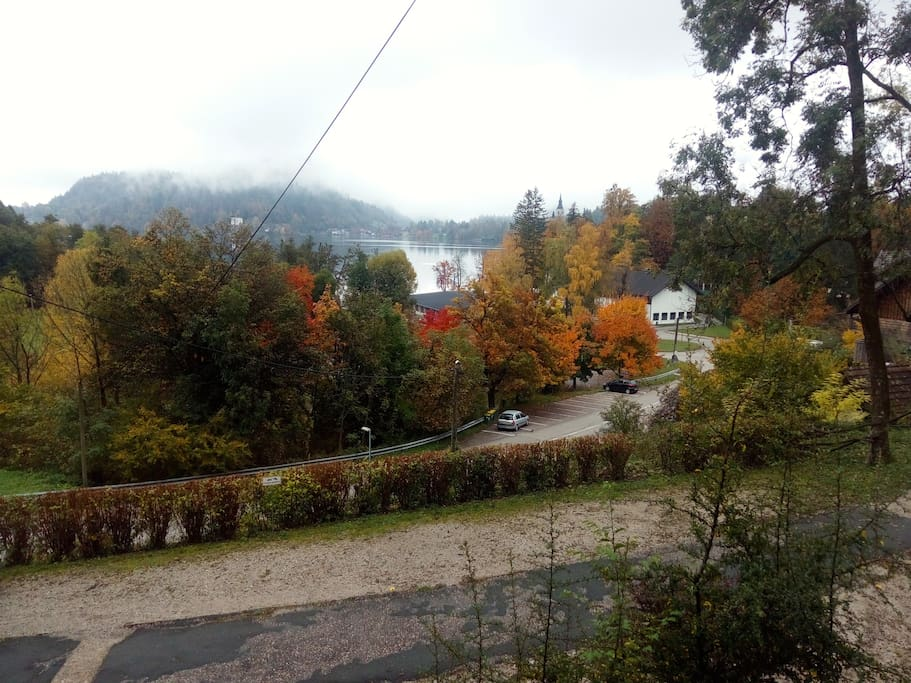 Gorgeous view from dining room on the lake and island (autumn)