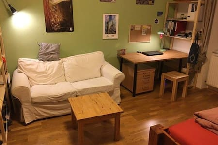 Großes, gemütliches Zimmer in super Lage - Innsbruck - Lakás