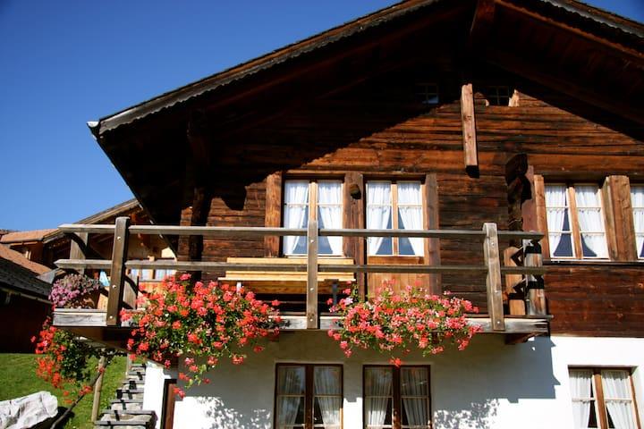 Swiss Chalet - Hasliberg