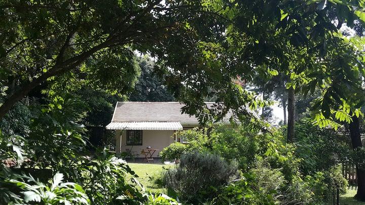 14 on Chapel, Botha's Hill, KZN
