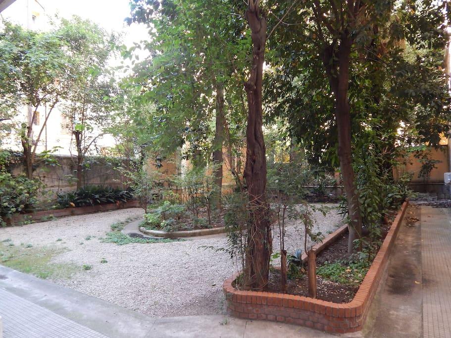 Small inner garden of building.