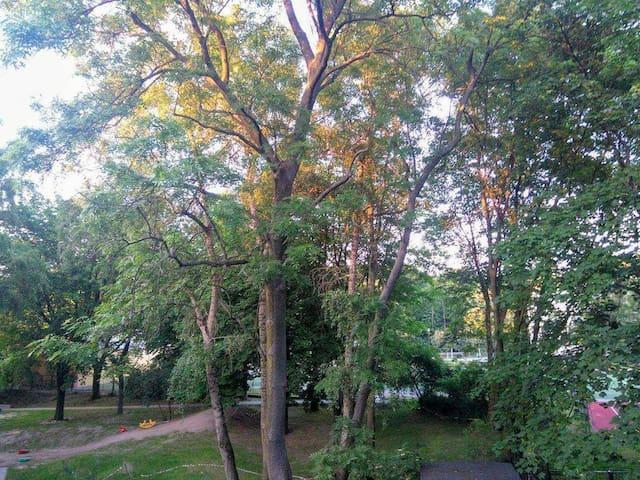 Przytulne studio blisko centrum - zieleń i cisza