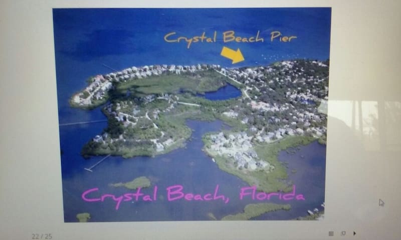 NO FEES King Bed Crystal Beach 1 Bedroom Apartment