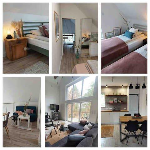 Sypialnia z łóżkiem podwójnym, sypialnia z łóżkami pojedyńczymi, antresola, salon z widokiem na wysokie drzewa, kuchnia