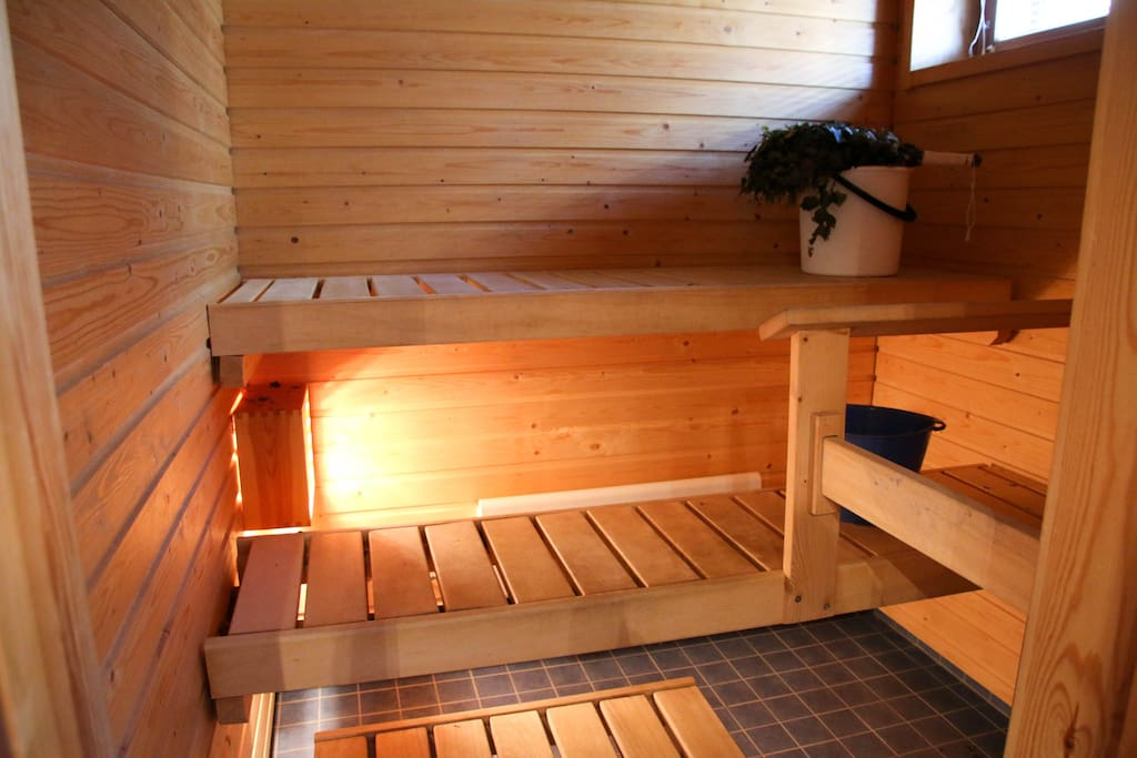 Real Sauna in our apartment