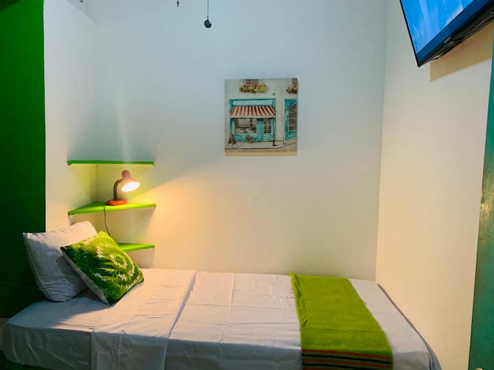 Iguana room single bed