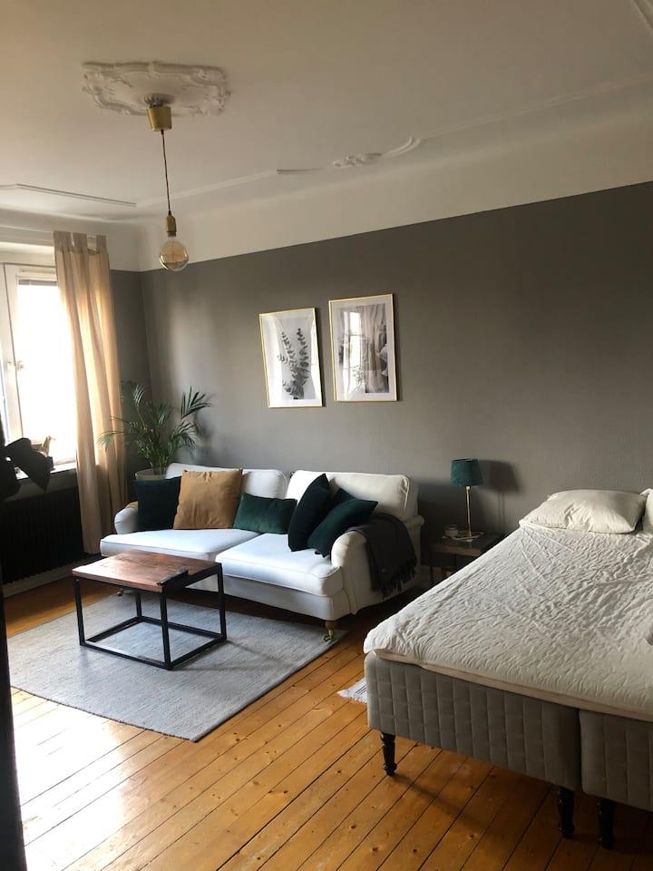 Entire studio apartment in Malmö City