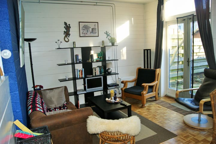 Cozy, central apartment with garden - Delft - Appartement
