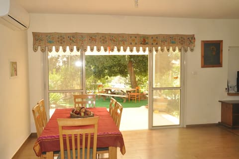 Spacious 4 bedrooms house in the Golan hights