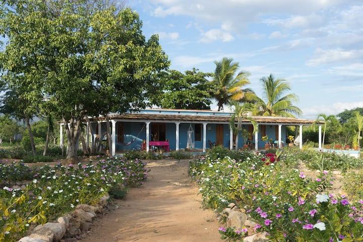 Villa Hermosa Room 1